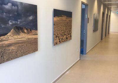 צילום מתוך המבנה החדש של המשרד לאיכות הסביבה בקריית הממשלה, ירושלים